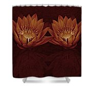 Water Lilies In Deep Sepia Shower Curtain