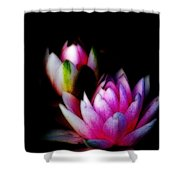 Water Lilies Ll Shower Curtain