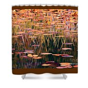 Water Lilies Re Do Shower Curtain