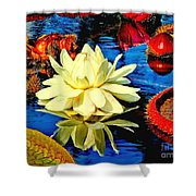 Water Lilly Pond Shower Curtain by Nick Zelinsky