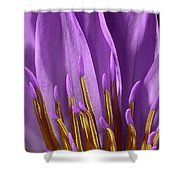 Water Lily-0005 Shower Curtain