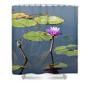 Water Lily And Dragon Fly One Shower Curtain