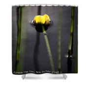 Water Lily  Luke  Shower Curtain