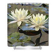 Water Lily Pair Shower Curtain