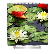 Water Lily Pond In Autumn Shower Curtain