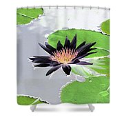 Water Lily - Purple Power - Photopower 1376 Shower Curtain