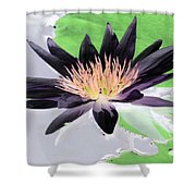Water Lily - Purple Power - Photopower 1377 Shower Curtain