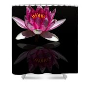 Water Lily Reflection Shower Curtain