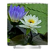 Water Lily Serenity Shower Curtain