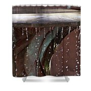Water Overload Shower Curtain
