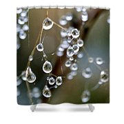 Water Pearls Shower Curtain