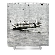 Water Perch Shower Curtain