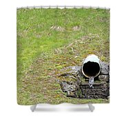 Water Pipe Shower Curtain