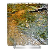 Water Plants 2 Shower Curtain