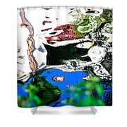 Water Reflection 29354 Shower Curtain