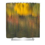 Water Reflections Abstract Autumn 2 C Shower Curtain