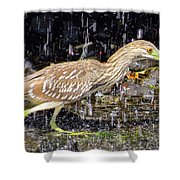 Water Runner Shower Curtain