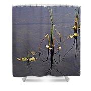 Water Scene Shower Curtain