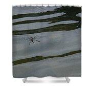 Water Skipper In Digital Oil Pastel Shower Curtain