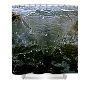 Water Spout 3 Shower Curtain