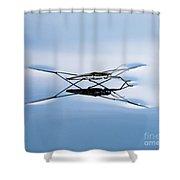 Water Strider Shower Curtain