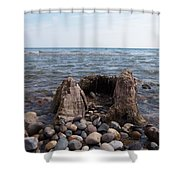 Water Stump Shower Curtain