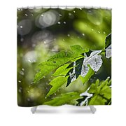 Water-the Essence Of Life V3 Shower Curtain