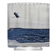 Water Trail Shower Curtain