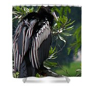 Water Turkey Shower Curtain