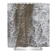 Water Vail Shower Curtain