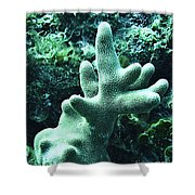 Water World Two Shower Curtain