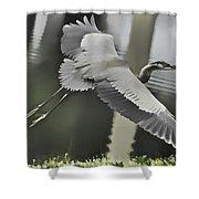 Waterbird Flying Shower Curtain