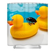 Waterbug Takes Yellow Taxi Shower Curtain