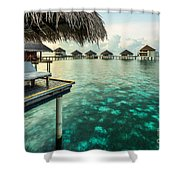 Waterbungolaws Shower Curtain