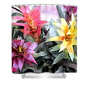 Watercolor And Ink Sketch Of Colorful Bromeliads Shower Curtain