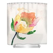 Watercolor Illustration With Beautiful Flower  Shower Curtain