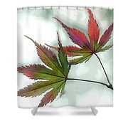 Watercolor Japanese Maple Leaves Shower Curtain