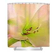 Watercolor Lily Bloom Shower Curtain