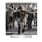 Watercolor Longhorns Shower Curtain