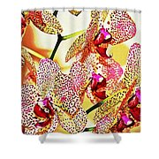 Watercolor Orchid Shadows Shower Curtain