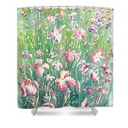 Watercolour Of Pink Iris's In A Green Field Shower Curtain