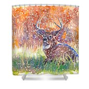 Watercolour Painting Of A Stag In The Snow Shower Curtain