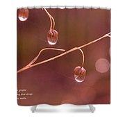 Waterdrop Haiku Shower Curtain