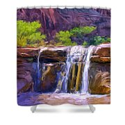 Waterfall At Coyote Creek Shower Curtain