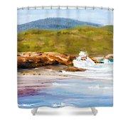 Waterfall Beach Denmark Painting Shower Curtain