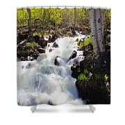 Waterfall By The Aspens Shower Curtain