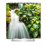 Waterfall In The Hosta Shower Curtain