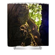 Waterfall Mountain Shower Curtain