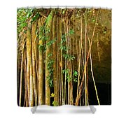 Waterfall Of Jungle Tree Roots Shower Curtain