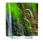 Waterfall Over Ferns Shower Curtain